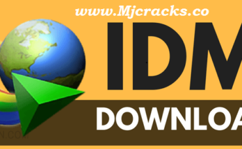 IDM 6.35 Build 7 Crack With Serial Key Free Download