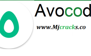 Avocode 4.4.0 Crack Plus Patch Keygen 2020 [Mac/Win]